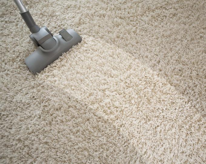c mo limpiar correctamente suelos con moqueta lavandon